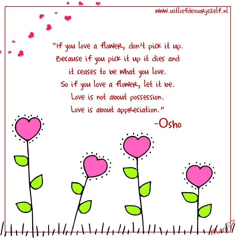 ULVJ---Quote-03