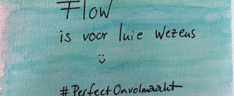 Flow: voor luie wezens? Of sleutel tot geluk?