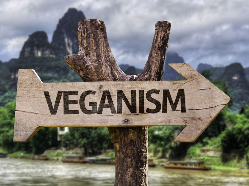 Veganistisch