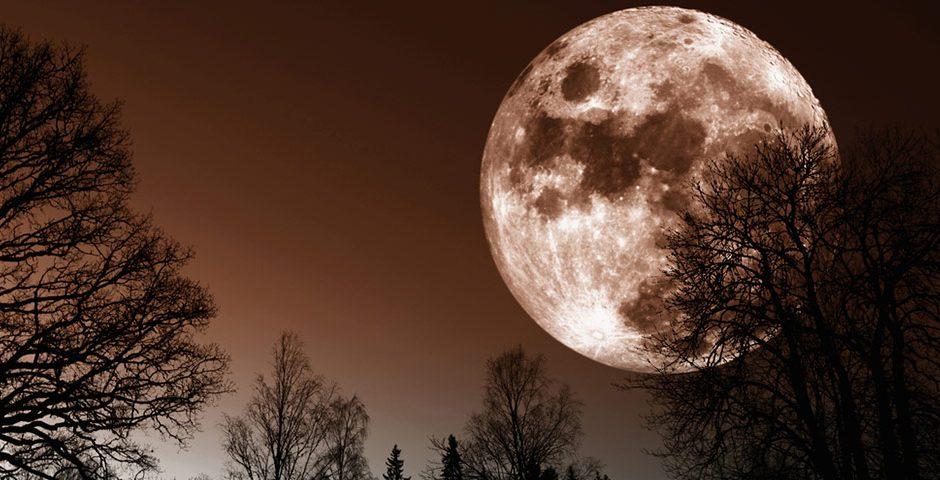 De kracht van de volle maan